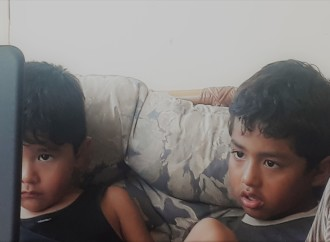 """""""La exposición sin supervisión a pantallas digitales afecta el desarrollo de niños y niñas"""""""