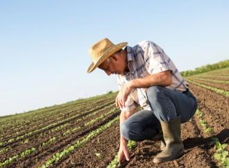 Microempresarios del sector Agro, los que más han solicitado créditos para enfrentar la crisis