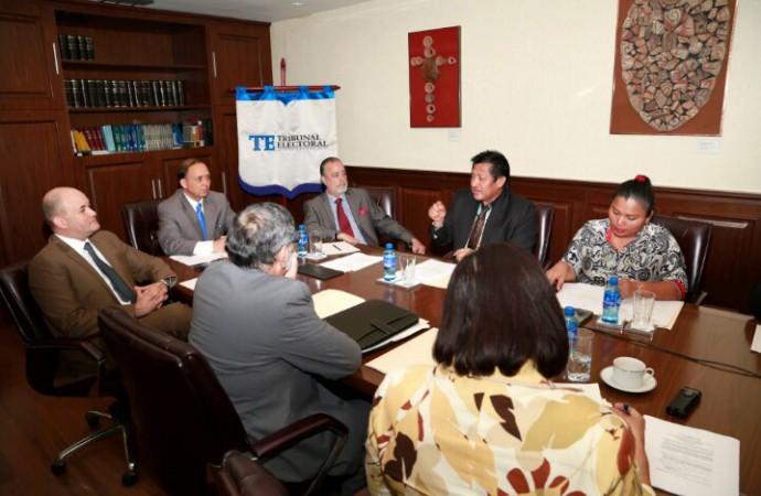 Diputado comarcal pide opinión al TE sobre elecciones en la Comarca Ngäbe-Buglé