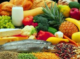 FAO/OPS: sobrepeso afecta a casi la mitad de la población de todos los países de América Latina y el Caribe salvo por Haití