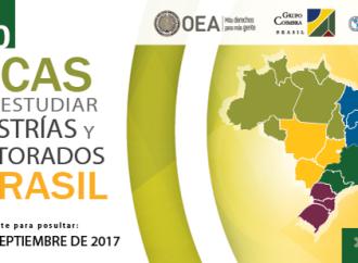 Abierto programa de Becas PAEC-OEA-GCUB para maestrias y doctorados en Brasil