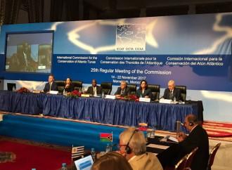 Panamá asume la Presidencia de la Comisión Internacional para la Conservación del Atún del Atlántico