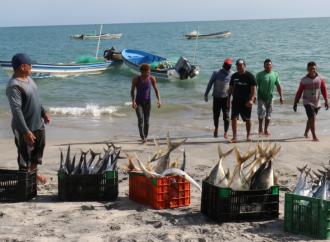 MIDA y ARAP fortalecen actividad pesquera en la Provincia de Coclé