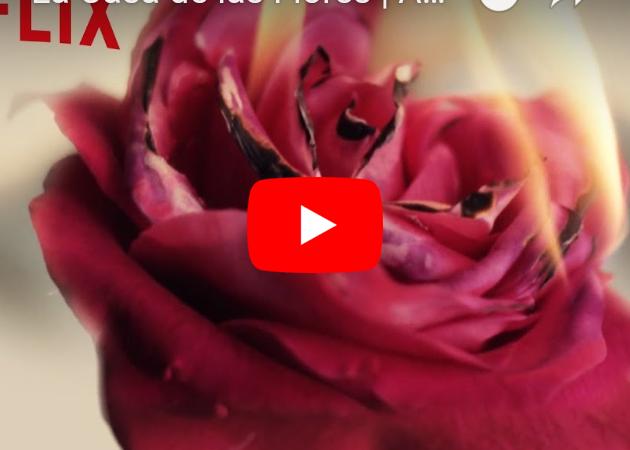 Las apariencias engañan… La Casa de las Flores estelarizada porVerónica Castro, Aislinn Derbez y Cecilia Suárez