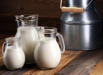 1 de junio – Día Mundial de la Leche: La leche, el alimento que brinda la mejor absorción de calcio al organismo