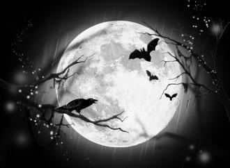 ¿Qué seguro necesitan los monstruos de Halloween?