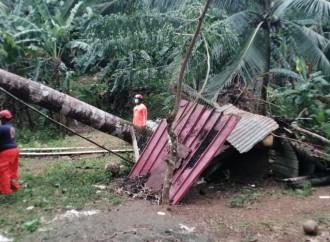 Lluvias dejan anegaciones, caída de árboles y deslizamiento de tierras