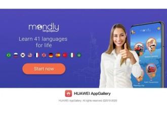 Este 2021 aprende un nuevo idioma
