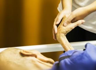 Acceso al sistema de salud y atención al cuidador de pacientes con enfermedades poco frecuentes