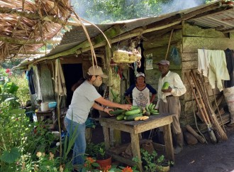 Sustainable Harvest International anuncia «Transformación de un Millón de Fincas»