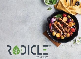 Kerry lanza Radicle™ con el objetivo de acompañar a la industria en su camino a producir mejores alimentos plant-based