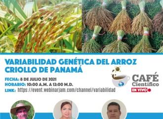 La SENACYT invita al Café Científico: Variabilidad Genética del Arroz Criollo de Panamá