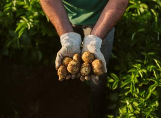 PepsiCo publica su informe de sostenibilidad 2020 destacando avances en la construcción de un sistema alimentario más sostenible