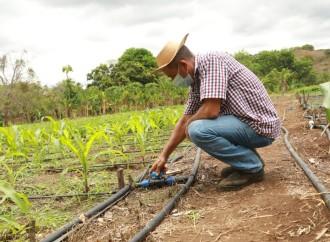 Programas de transferencia monetaria ha brindado protección a más de 200 mil panameños durante la pandemia de la Covid-19