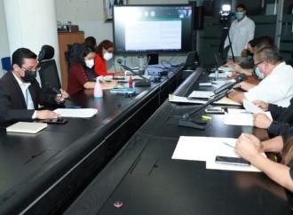 Comisión de la AN avanza en el Proyecto de Ley para la protección de las tortugas marinas