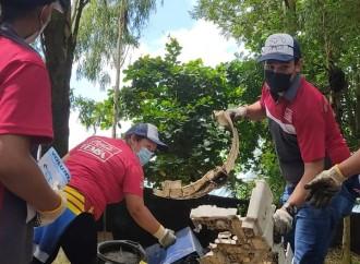 Voluntarios del Sistema Coca-Cola se unen a la gran limpieza de playas, conmemorando el mes de los Océanos
