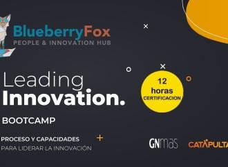 Blueberry Fox presenta su primer «Leading Innovation Bootcamp» con certificación y abierto a todo público