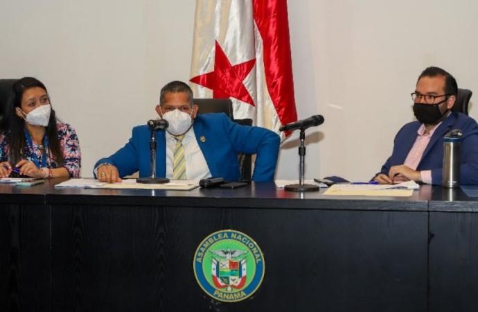 Panamá avanza en legislación que busca proteger las tortugas Marinas